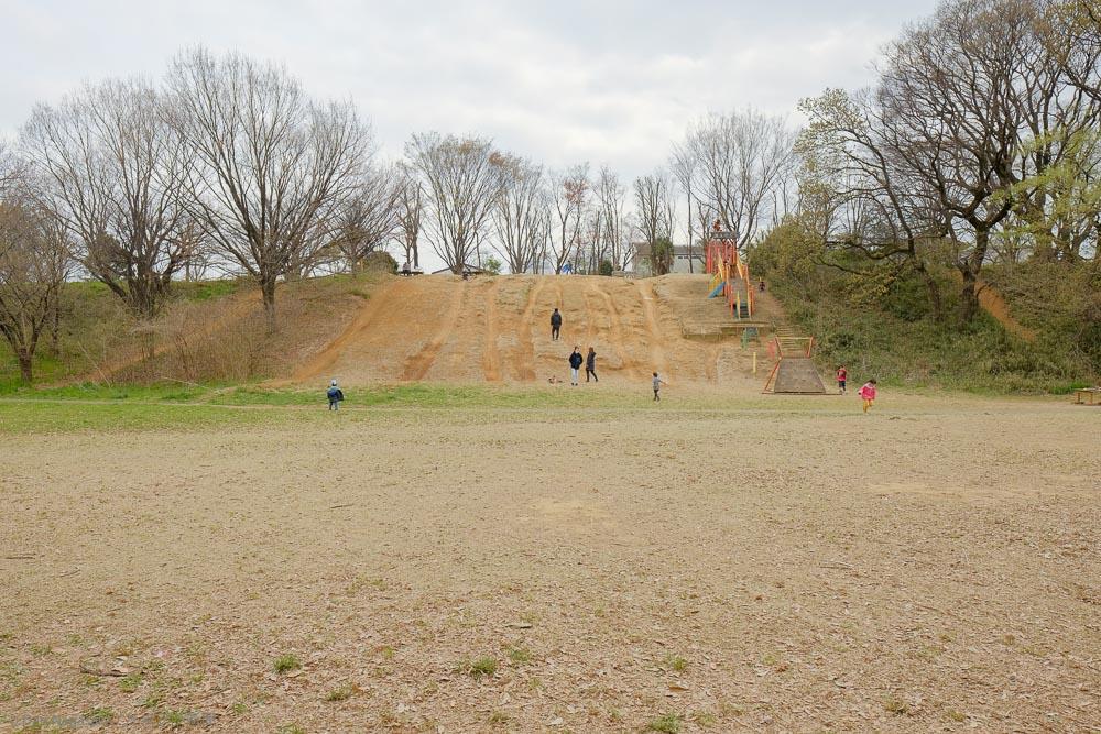 菅生緑地の断崖