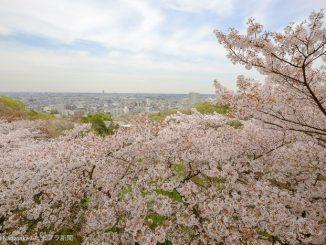 枡形山展望台からの眺望