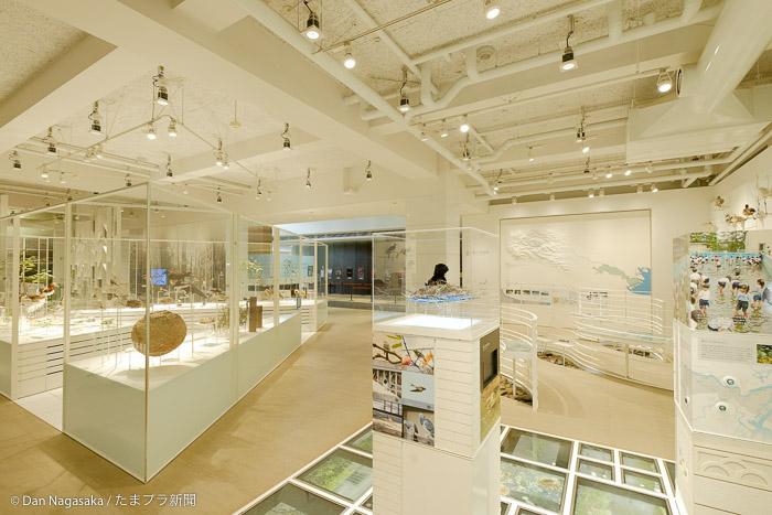 かわさき宙と緑の科学館の常設展示