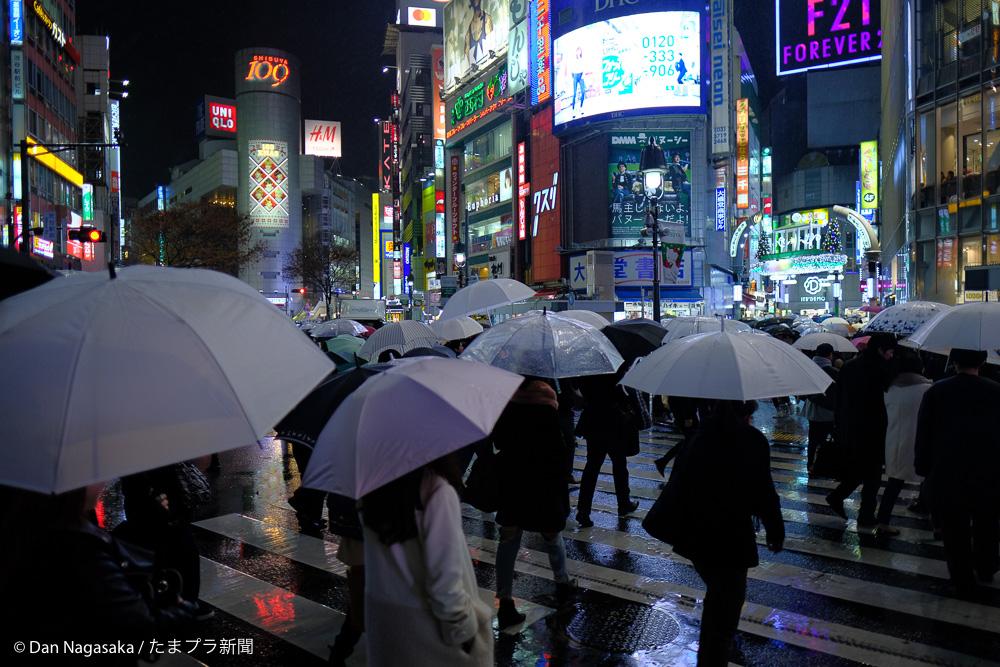 渋谷スクランブル交差点の傘の花