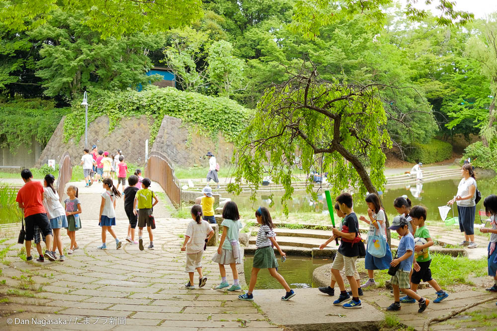 池を横切る小学生たち