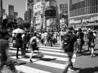夏の渋谷スクランブル交差点