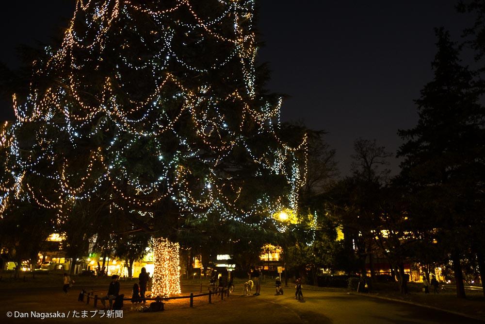 クリスマスツリー下で遊ぶ子供