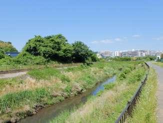 都筑区の早渕川