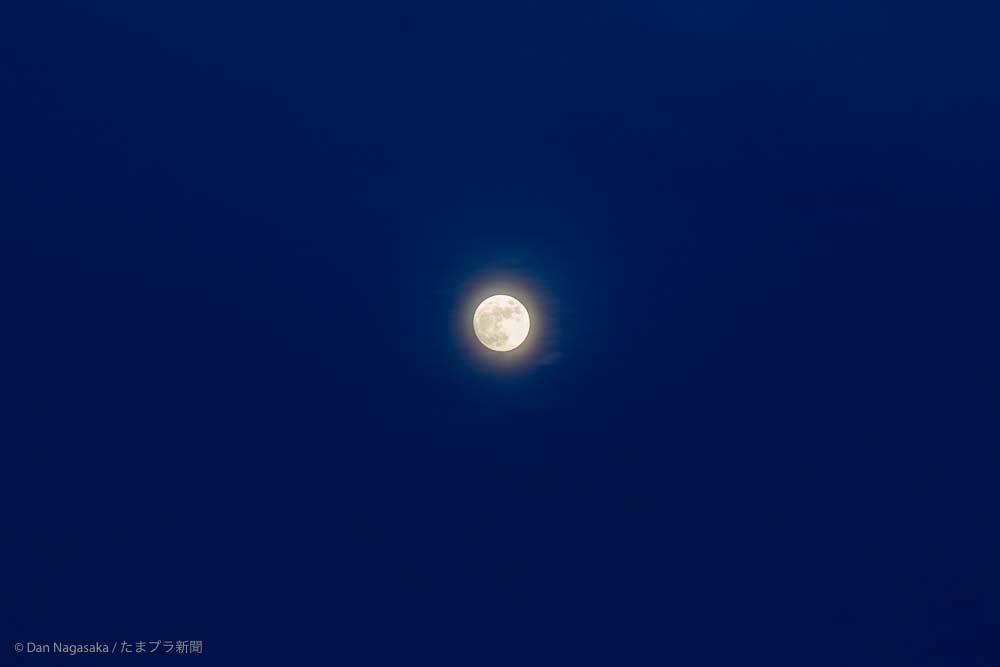 おぼろ満月