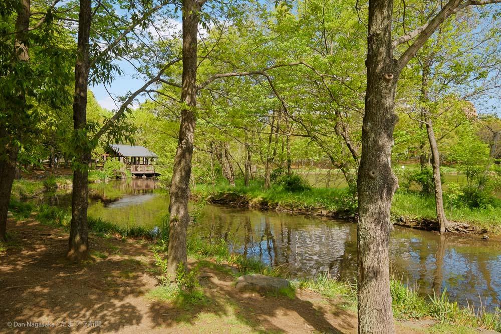 徳生公園の池と小屋