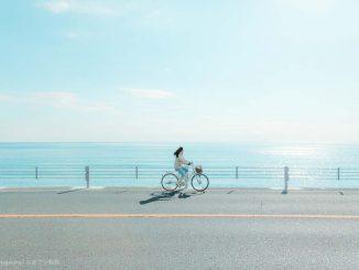 湘南サイクリング