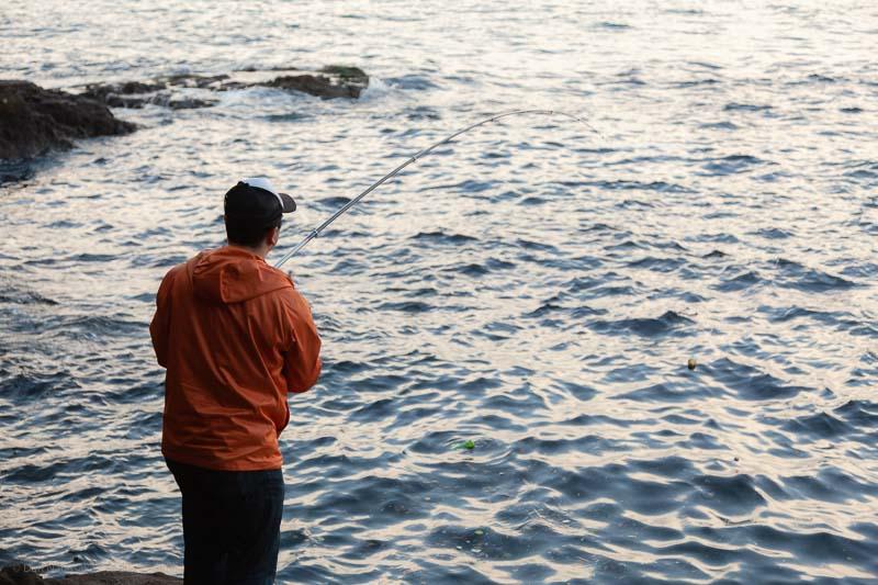 猿島ヨネノ根で釣り