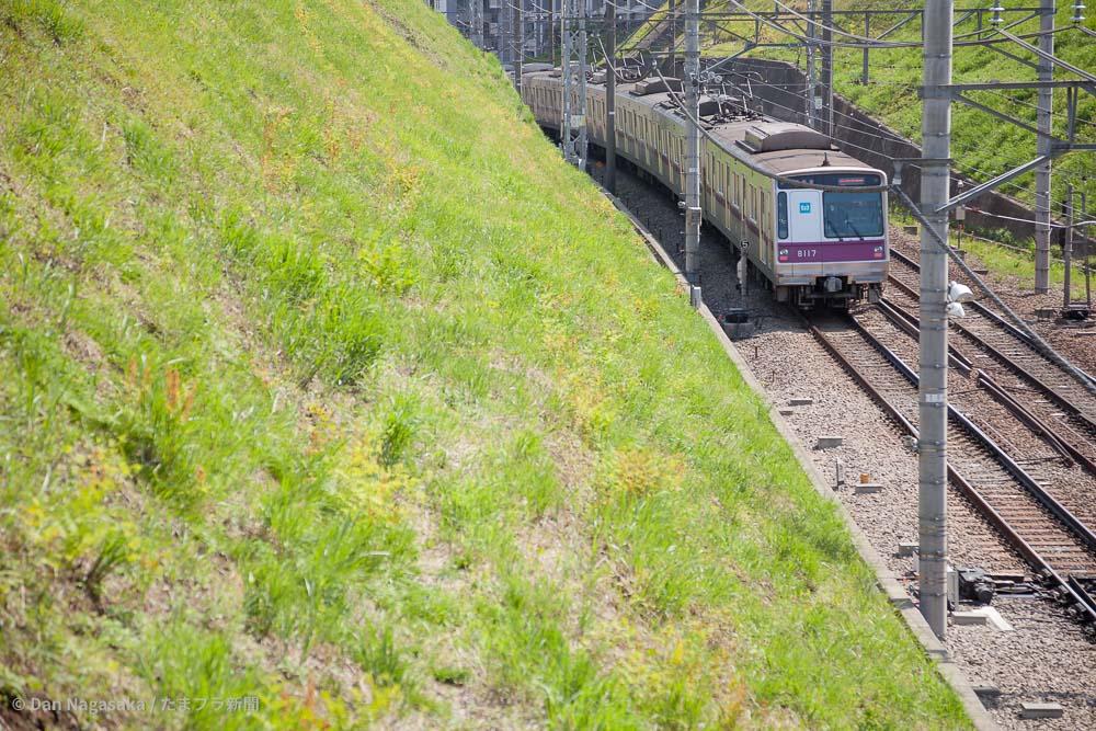 あざみ野のトンネルを出る鉄道