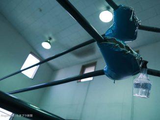 全日本プロレス道場のリング