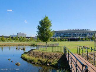 新横浜公園の池と日産スタジアム