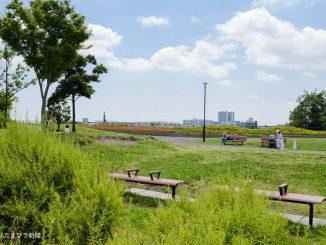 二子玉川公園の緑地