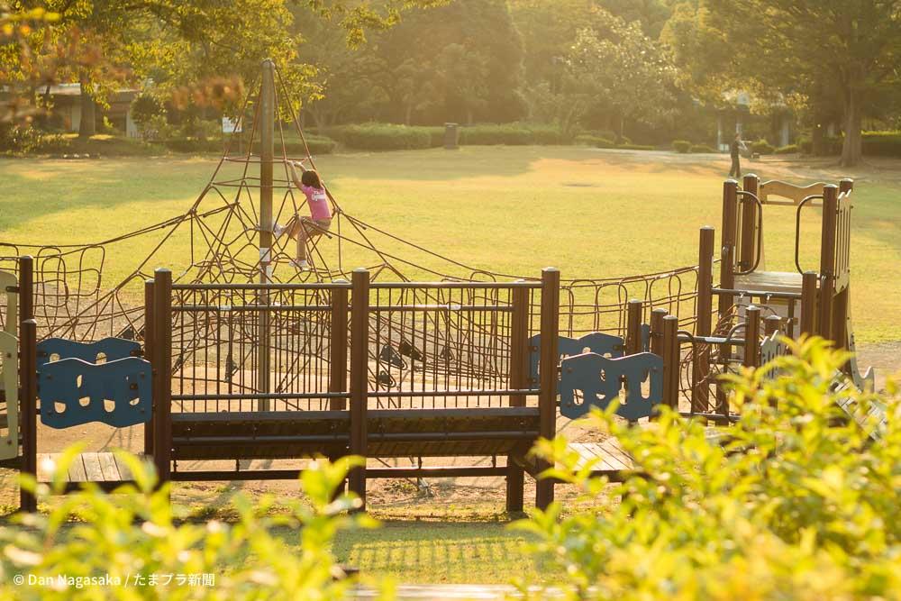 王禅寺ふるさと公園 中央広場の遊具