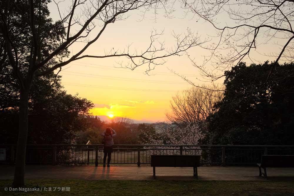 王禅寺ふるさと公園からの夕焼け