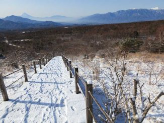 美し森からの富士山